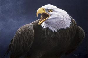 Cry of the Eagle by Jeremy Paul