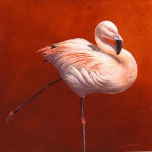 Flame Bird Flamingo by Jeremy Paul