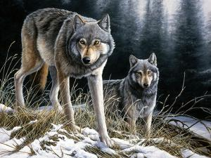 Over the Ridge Wolves by Jeremy Paul