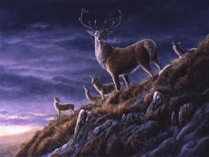 Threatening Sky Red Deer by Jeremy Paul