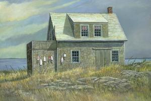 Island Rental by Jerry Cable