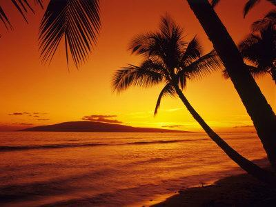 Colorful Sunset in a Tropical Paradise, Maui Hawaii, USA