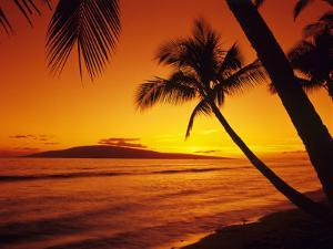 Colorful Sunset in a Tropical Paradise, Maui Hawaii, USA by Jerry Ginsberg