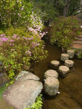 Asticou Azalea Gardens in Northeast Harbor, Mt. Desert Island, Maine, USA by Jerry & Marcy Monkman