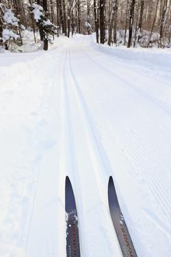Cross Country Skis, Notchview Reservation, Windsor, Massachusetts by Jerry & Marcy Monkman