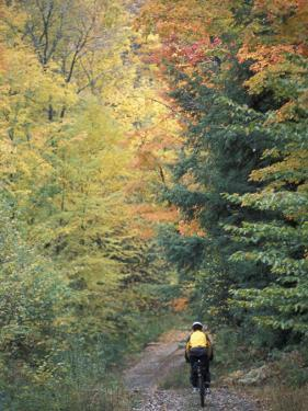 Mountain Biking on Old Logging Road of Rice Hill, Green Mountains, Vermont, USA by Jerry & Marcy Monkman