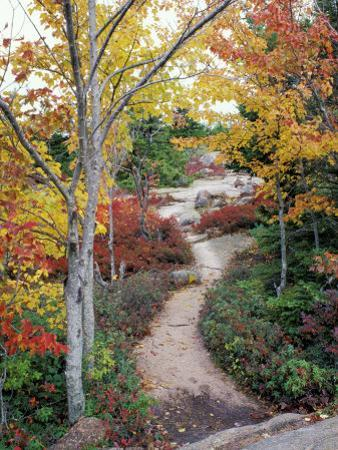Penobscot Mountain Hiking Trails in Fall, Maine, USA by Jerry & Marcy Monkman