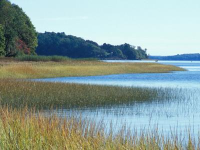 Salt Marsh Bordering the Royal River, Maine, USA by Jerry & Marcy Monkman