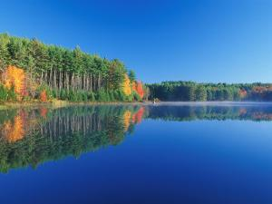 White Pines and Hardwoods, Meadow Lake, New Hampshire, USA by Jerry & Marcy Monkman