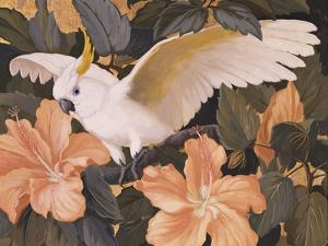 Cockatoos and Pink Hibiscus by Jesse Arms Botke