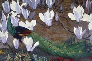 Peacock and Magnolia by Jesse Arms Botke