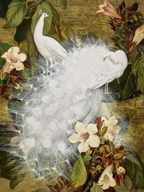 White Peacocks on Pink Hibiscus by Jesse Arms Botke