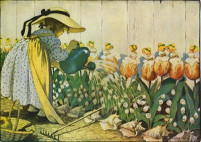 Flowers Being Watered - Mary, Mary