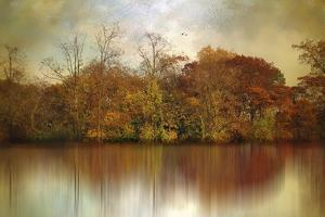 Autumn on a Pond by Jessica Jenney