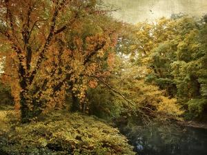 Gilded Autumn by Jessica Jenney
