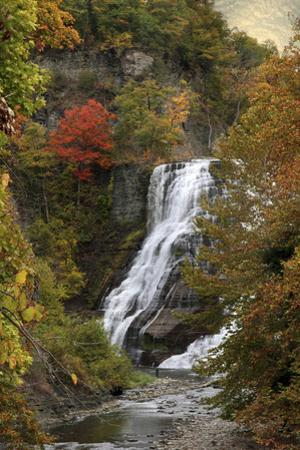 Ithaca Falls by Jessica Jenney