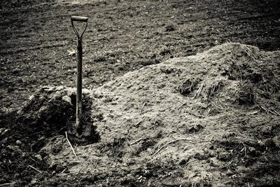Old Shovel Sticks up in Pile of Earth. Sepia Toned