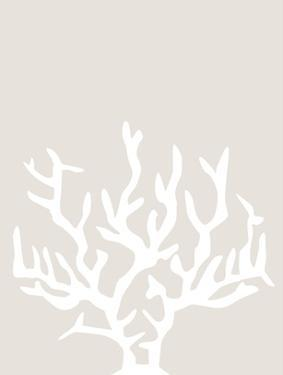 Beige White Coral by Jetty Printables