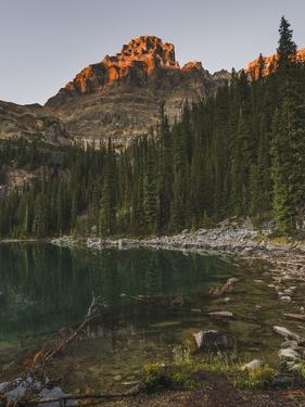 Lake O'Hara at sunset, Yoho National Park, UNESCO World Heritage Site, British Columbia, Canadian R by JIA HE