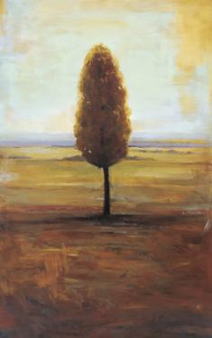 Solitaire II by Jill Barton