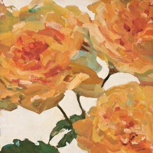 Tangerine Dream II by Jill Barton