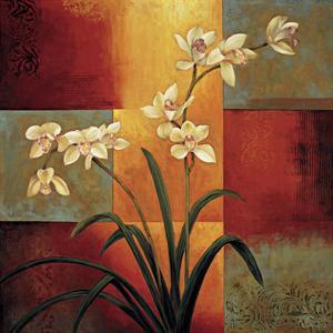 White Orchid by Jill Deveraux