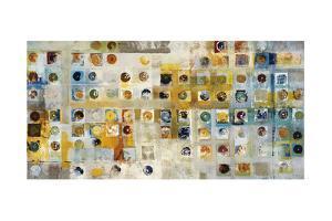 Continuum by Jill Martin
