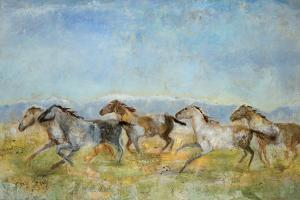 Excitement by Jill Martin