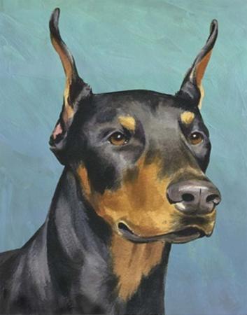 Dog Portrait, Dobie