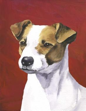 Dog Portrait, Jack by Jill Sands