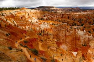 People Hiking Down on the Sunset Point of Bryce Canyon National Park by Jill Schneider