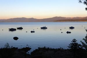 Scenic View of Lake Tahoe at Sunrise by Jill Schneider