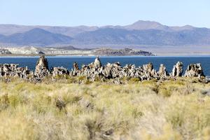 View of the Tufa Towers at Mono Lake by Jill Schneider