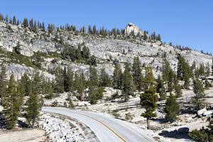 View of Tioga Road on the Way to Tuolumne Meadows by Jill Schneider