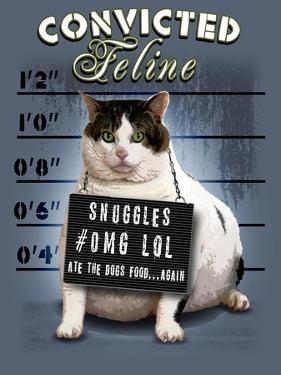 Convicted Feline by Jim Baldwin