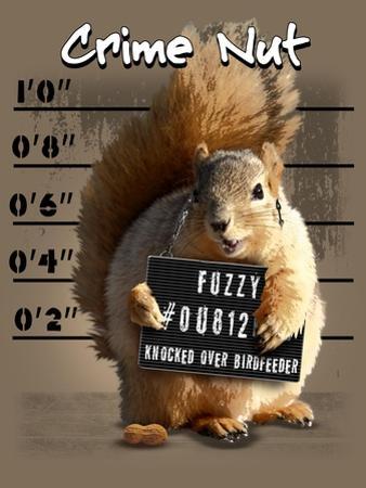 Squirrel by Jim Baldwin