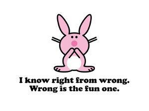 Wrong is Fun. by Jim Benton