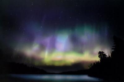 Aurora Bori