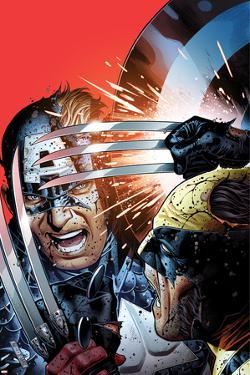 Avengers vs X-Men No.3 Cover: Captain America Fighting Wolverine by Jim Cheung