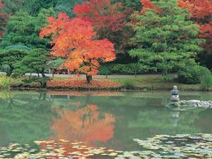 Japanese Tea Garden, WA by Jim Corwin