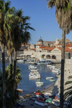 Boats in Harbor, Dubrovnik, Croatia, Europe by Jim Engelbrecht