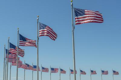 Flags by Washington Monument, Washington DC, Usa by Jim Engelbrecht
