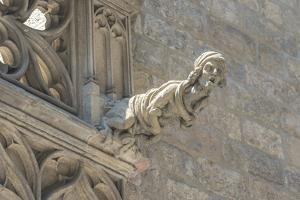 Spain, Barcelona, Stone Carving, Gargoyle by Jim Engelbrecht