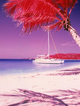 Catamaran on the Caribbean Shore by Jim McGuire