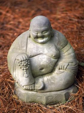 Statue of Buddha Sitting on Pine Straw by Jim McGuire