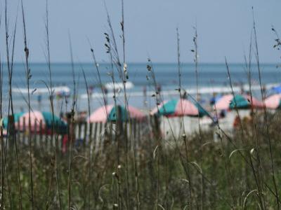 Umbrellas with Sea Grass, Myrtle Beach, SC by Jim McGuire