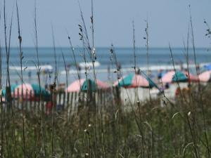 Umbrellas with Sea Grass, Myrtle Beach, SC by Jim McGuire