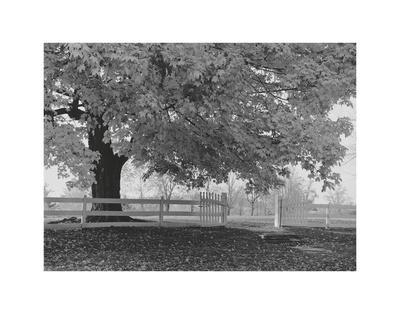 LANDSCAPE PHOTO ART PRINT Pleasant Hill by Jim Morris Country Poster 24x18