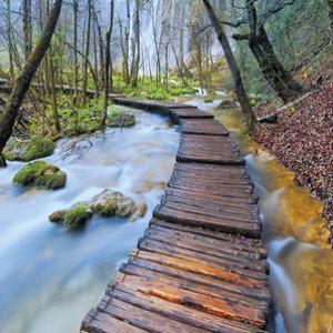 River Walk by Jim Nilsen