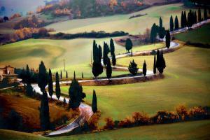 Strada Per Monticchiello by Jim Nilsen